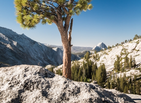 Olmsted Point, Yosemite, Californie