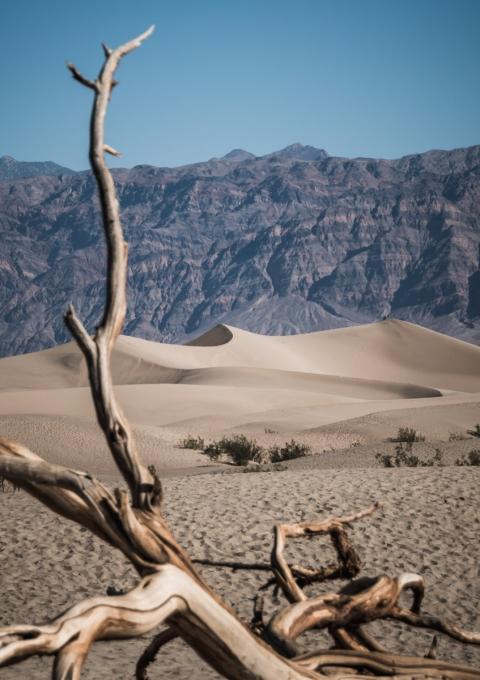 Mesquite Flat Sand Dunes, Death Valley, Nevada